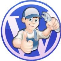 Tecnico_Wordpress